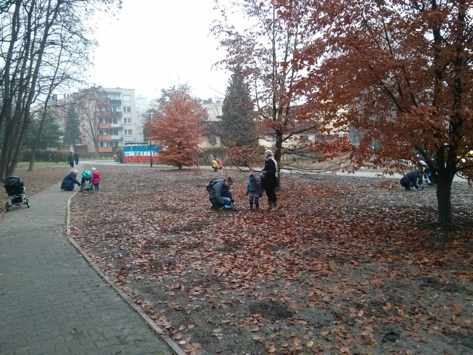 Mieszkańcy Czyżyn sadzą kwiaty w Parku Skalskiego w Krakowie Czyżynach