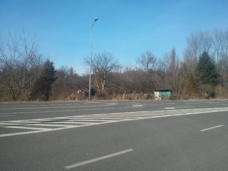 Działki w Czyżynach i zaniedbane zabudowania oraz zieleń