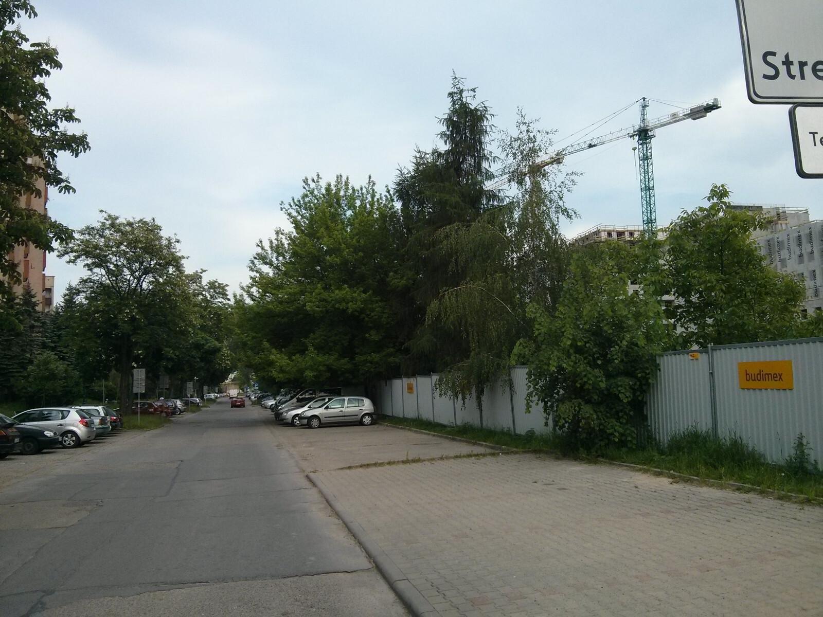 Parking spółdzielni mieszkaniowej Czyżyny obok działki ze spornymi drzewami